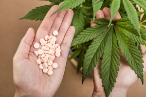 marihuana-kannabis-kontra-leki-farmaceutyczne