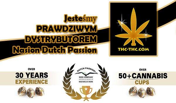dystrybutor, dutch passion, nasiona marihuany, nasiona konopi, sklep, thc-thc