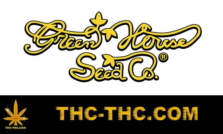 nasiona, marihuany, konopi, feminizowane, automatic, green house
