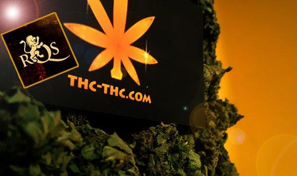 nasiona marihuany, nasiona konopi, royal queen seeds