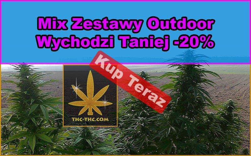 nasiona, marihuany, konopi, mix, zestawy, outdoor