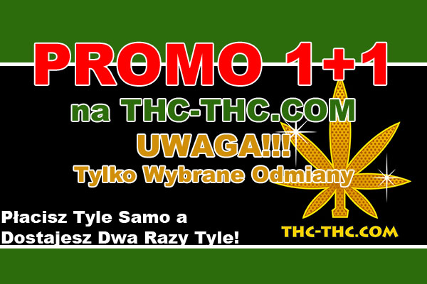 nasiona, marihuany, konopi, podwójne, 1 plus 1, promocje