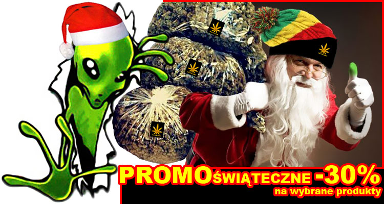 nasiona marihuany, nasiona konopi, promocje, thc-thc